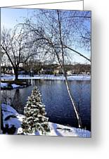 Christmas Tree By The Lake Greeting Card
