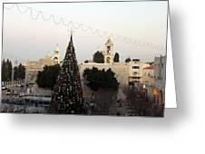Christmas Tree In Manger Square Bethlehem Greeting Card