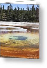 Chromatic Pool Hot Spring, Upper Geyser Greeting Card