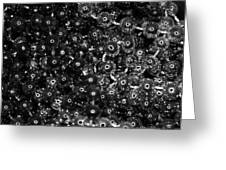 Chrome Beads Greeting Card