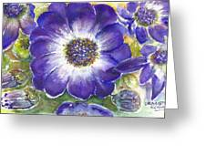 Cineraria Of South Africa  Greeting Card