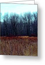 Cinnamon Fields Greeting Card