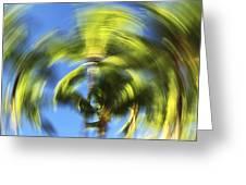 Circular Palm Blur Greeting Card