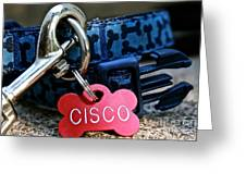 Cisco's Gear Greeting Card