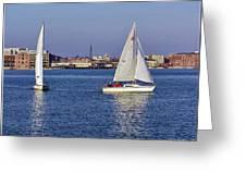 City Harbor Sailing Greeting Card