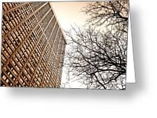 City Vs Nature Greeting Card