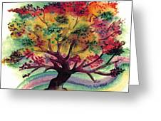 Clad In Color Greeting Card