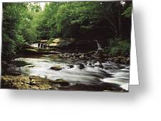 Clare River, Clare Glens, Co Tipperary Greeting Card