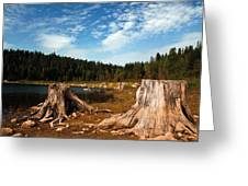 Clear Lake Oregon Greeting Card
