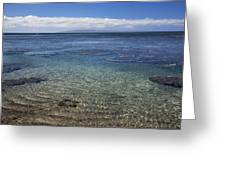 Clear Water And Coral Greeting Card