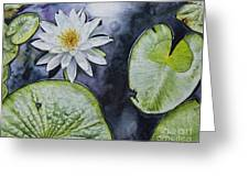 Clearwater Lilly Greeting Card