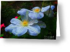 Clematis Altered Greeting Card