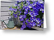 Clematis And Watering Can Greeting Card