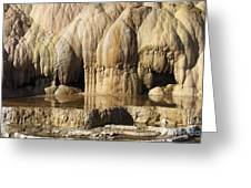 Cleopatra Terrace, Mammoth Hot Springs Greeting Card