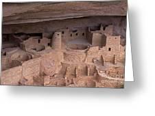 Cliff Palace At Mesa Verde Greeting Card