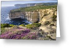 Cliffs Along Ocean With Wildflowers Greeting Card