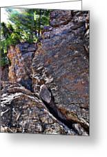 Climbing Rocks And Trees Greeting Card