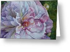 Close Focus Peony Greeting Card