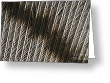Close-up Of A Turkey Feather Greeting Card