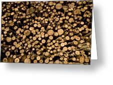 Close View Of Freshcut Wood Waiting Greeting Card