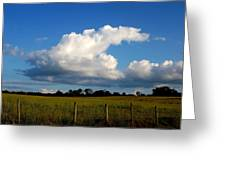 Cloud Greeting Card by Beverly Hammond