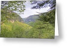 Cloudland Canyon Greeting Card