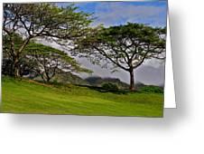 Clouds And Kiawe Greeting Card