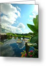 Cloudy Reflections And Lily Pad Companions  Greeting Card