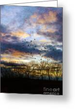 Cloudy Sunset With Bare Trees And Birds Flying Greeting Card