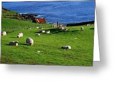 Co Cork, Beara Peninsula Greeting Card