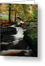 Co Wicklow, Ireland Waterfalll Near Greeting Card