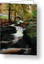 Co Wicklow, Ireland Waterfalll Near Greeting Card
