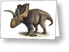Coahuilaceratops Magnacuerna Greeting Card