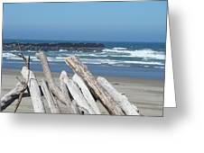 Coastal Driftwood Art Prints Blue Sky Ocean Waves Greeting Card by Baslee Troutman