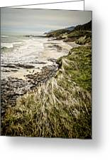Coastal Grass Greeting Card