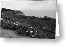Coastal View Mist - Black And White Greeting Card