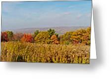 Cohocton Panorama Greeting Card