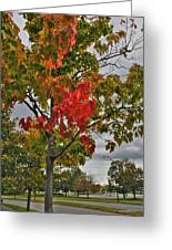 Cold Autumn Breeze  Greeting Card