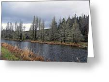 Cold Day On The Nemah River Greeting Card