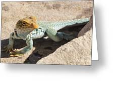 Collard Lizard Greeting Card
