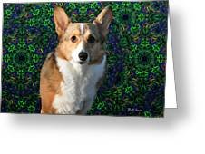 Collie Greeting Card by Bill Cannon