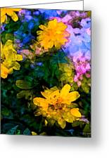Color 108 Greeting Card