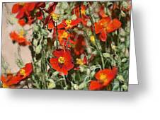 Color 82 Greeting Card