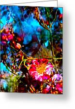 Color 91 Greeting Card by Pamela Cooper