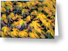 Color 93 Greeting Card