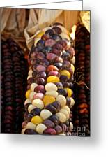 Color Corn Greeting Card