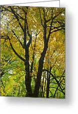 Color Me Yellow Greeting Card