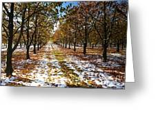 Color Play Greeting Card