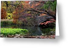 Color Splash In Central Park Greeting Card