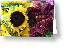 Color Splash Greeting Card